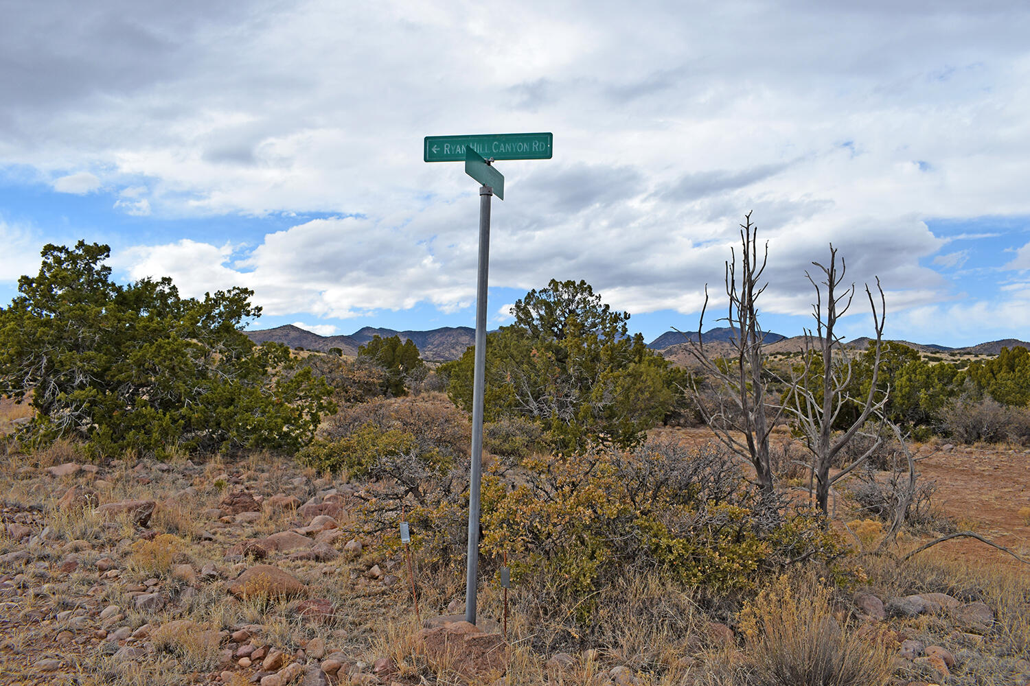 Lot 1a Willow Springs Ranch Property Photo 1