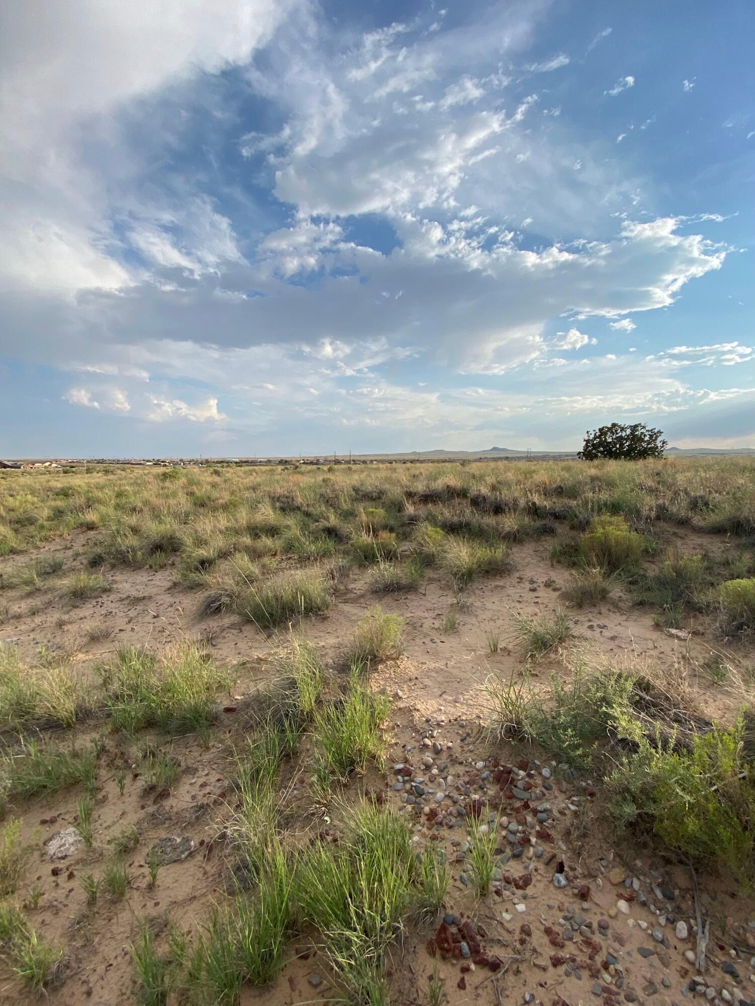 Margarita Drive Property Photo