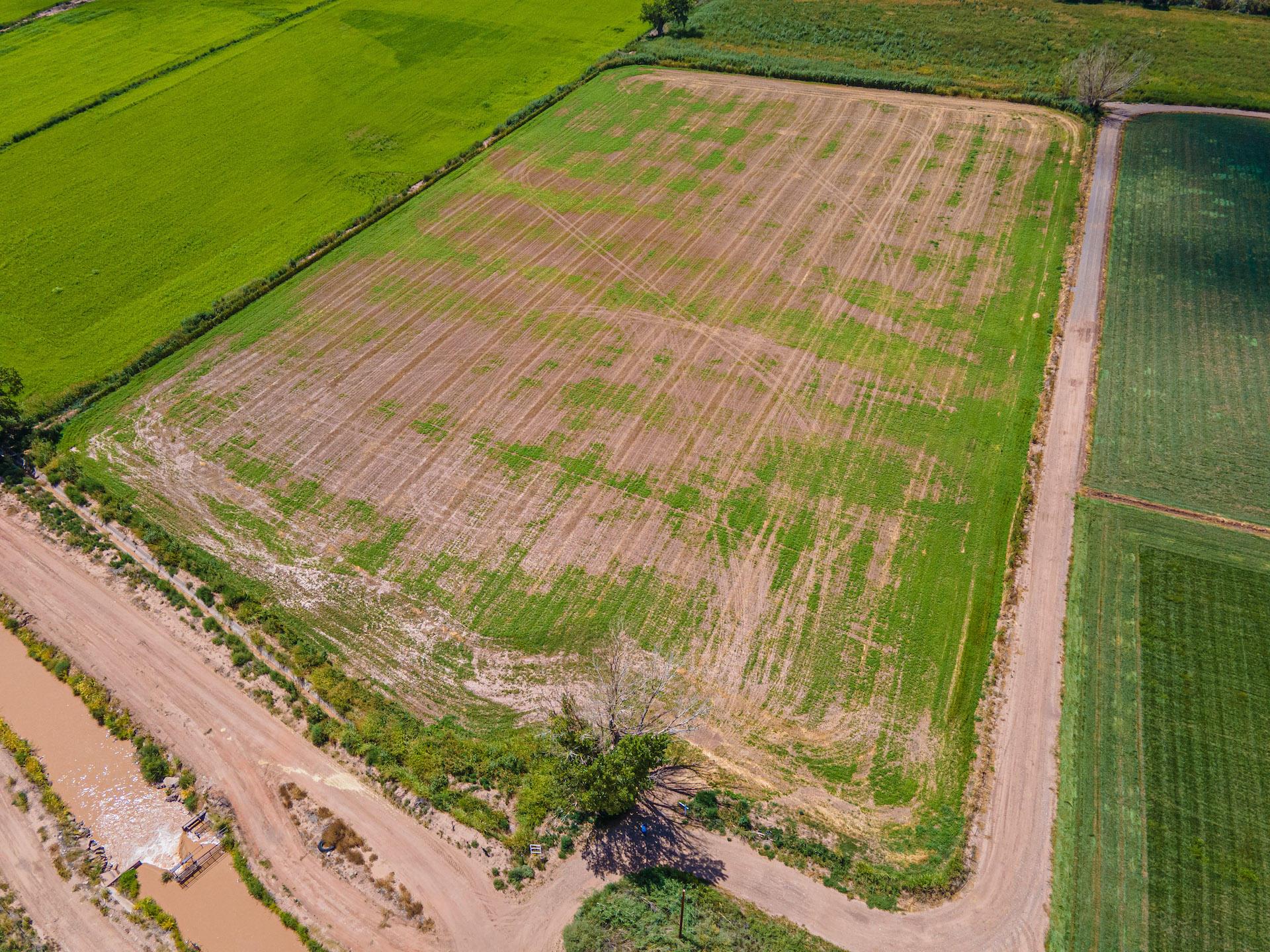 Albert Miranda Road Property Photo