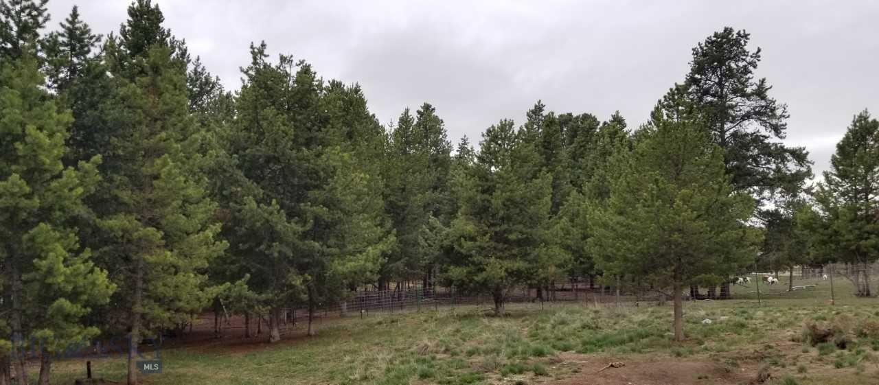 53251 Highway 43 Property Photo 14