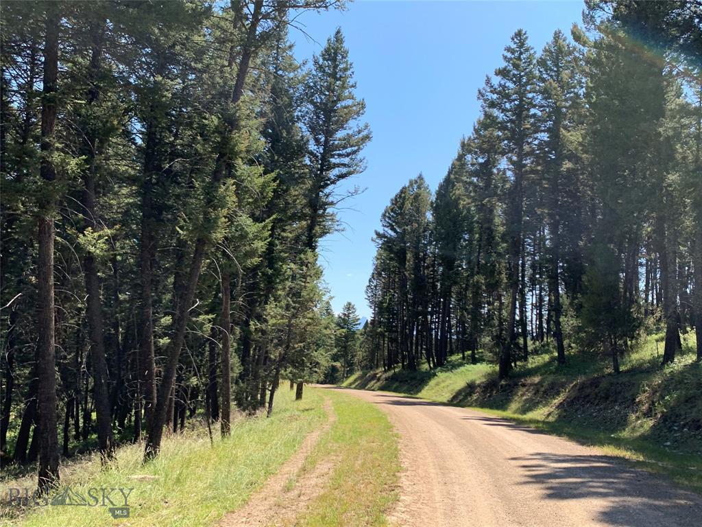 11000 Horseshoe Cottonwood Road Property Photo 13