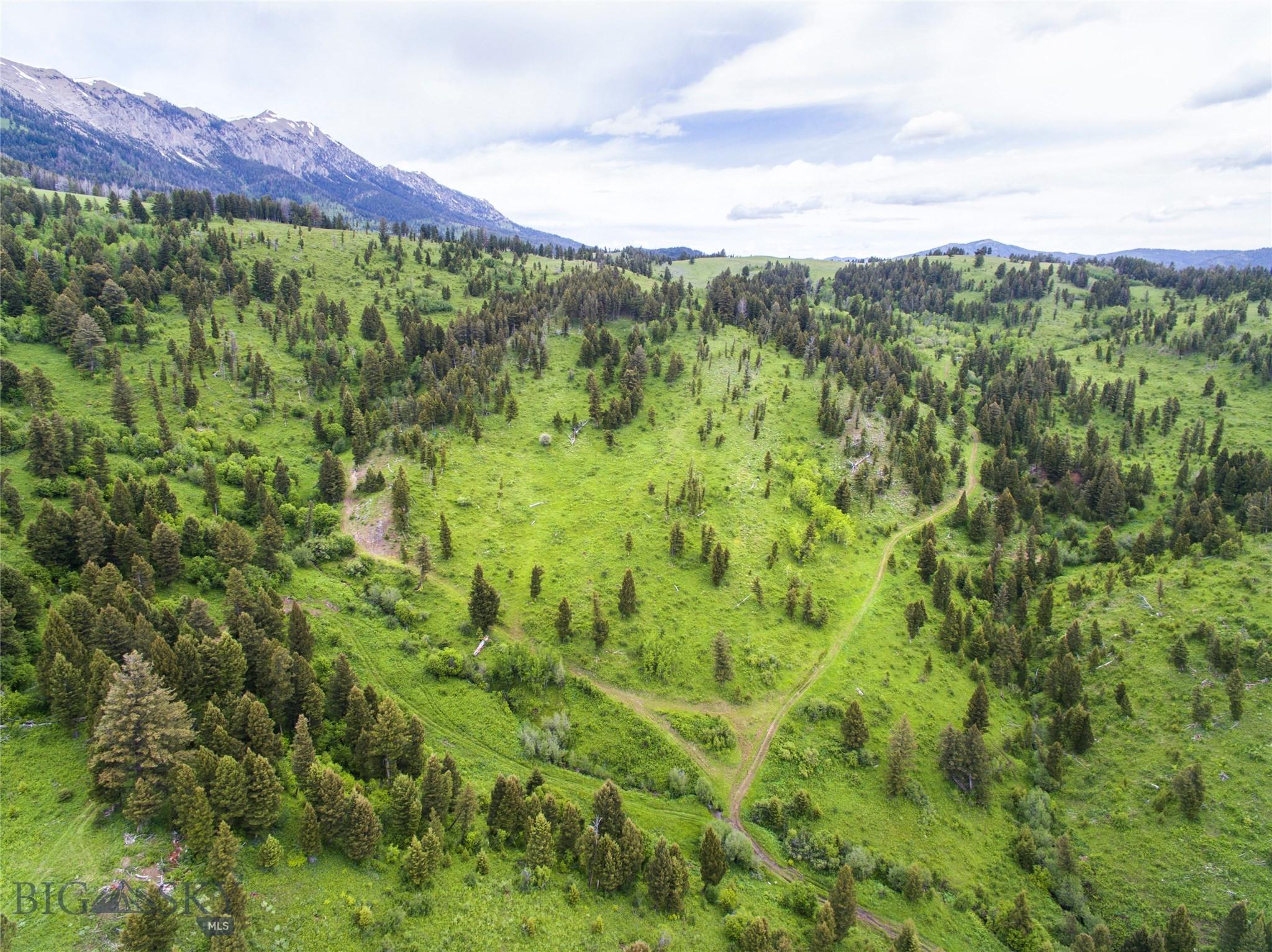 Tbd Bridger Canyon Road Property Photo 1