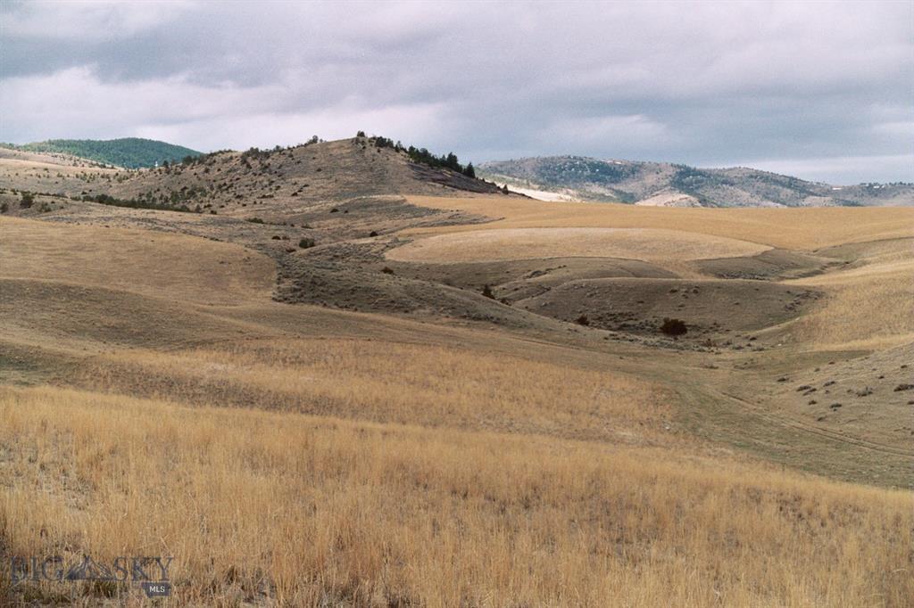 479 Milligan Canyon Road Property Photo 12