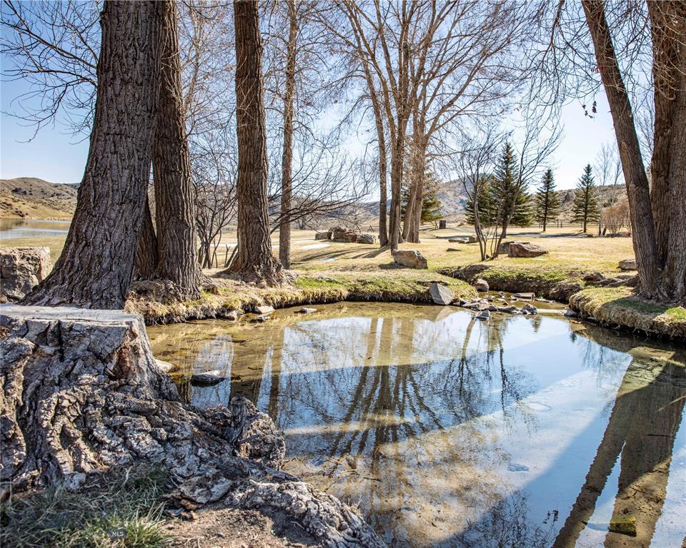 479 Milligan Canyon Road Property Photo 25