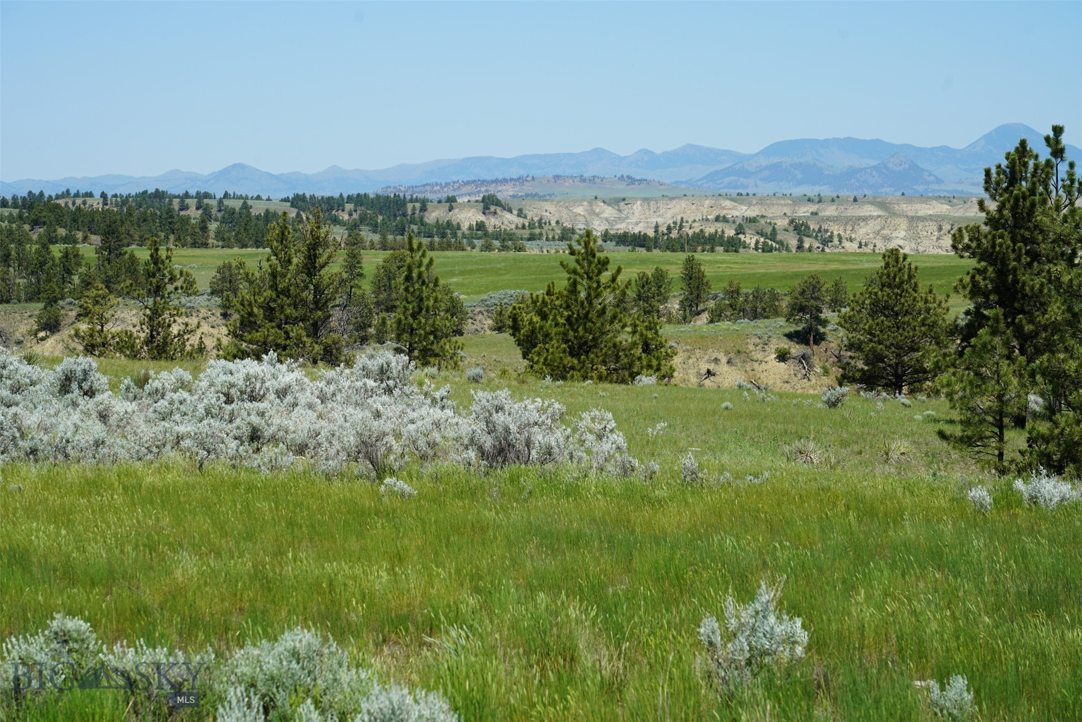 43 Zy Brown Ranch Road Property Photo