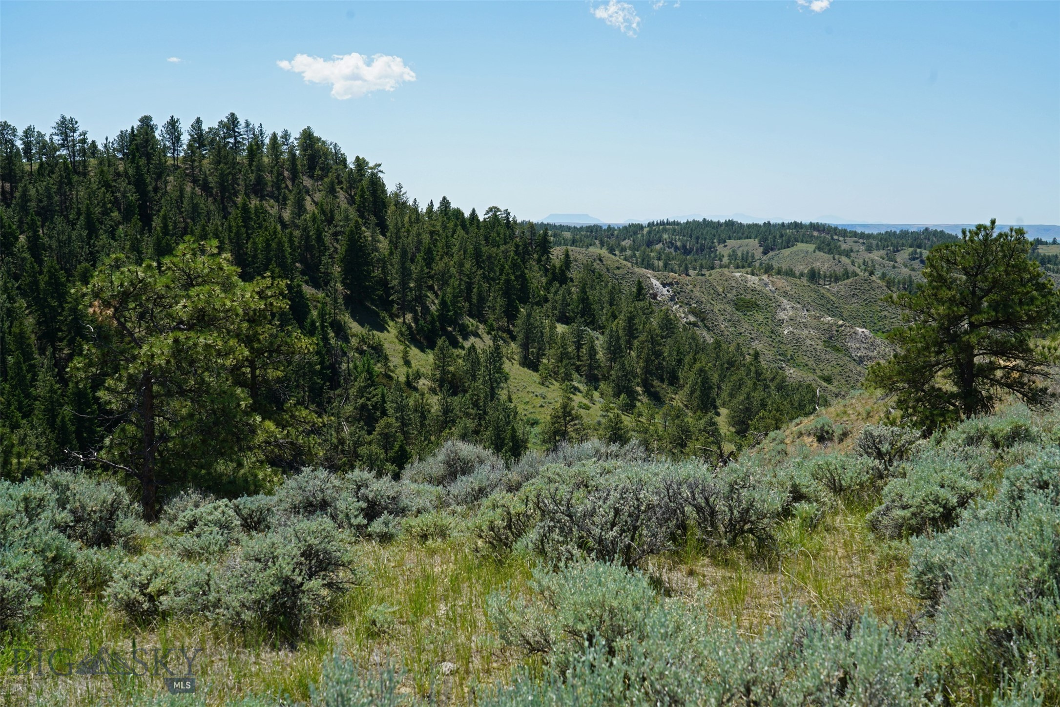 43 Zy Brown Ranch Road Property Photo 2