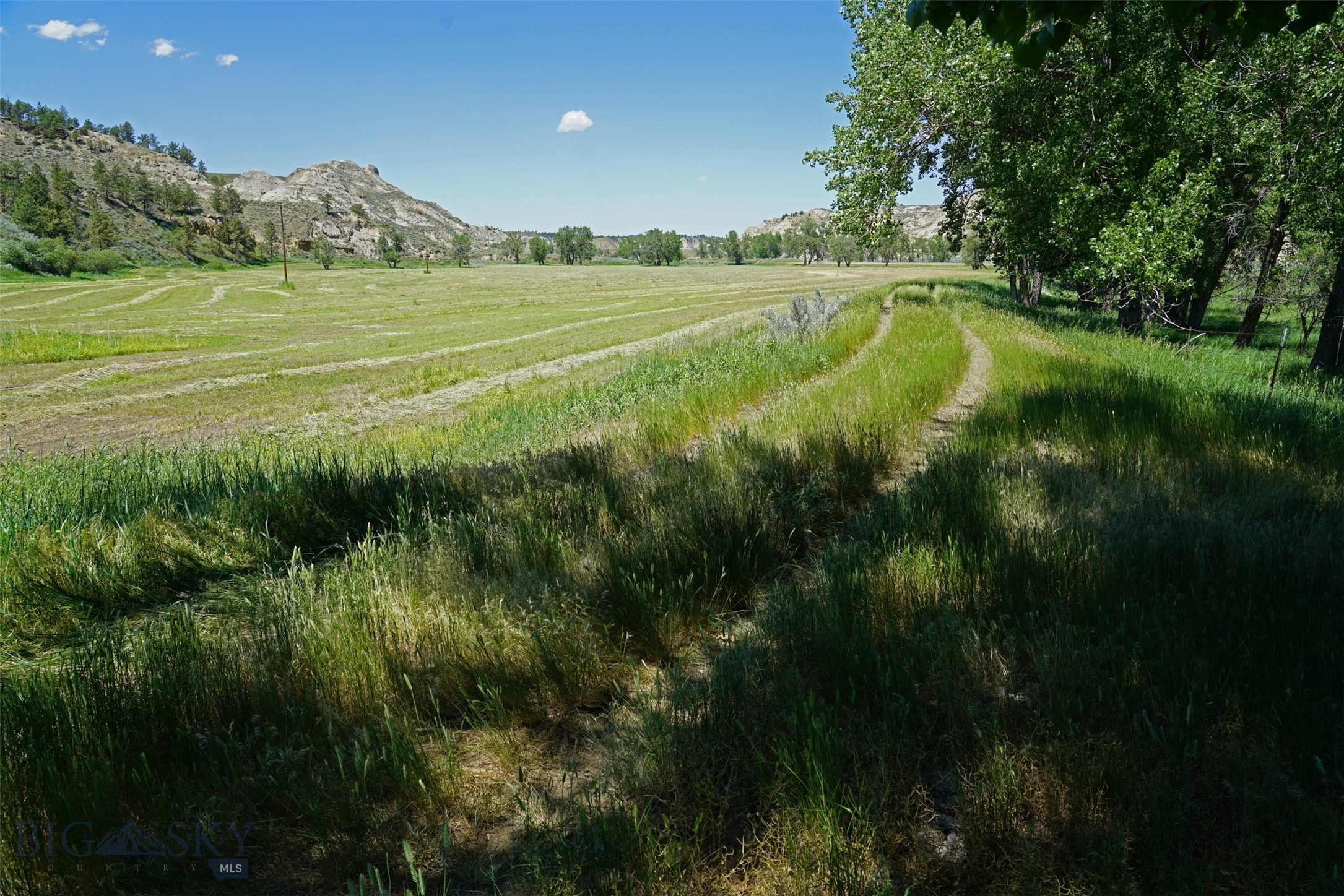 43 Zy Brown Ranch Road Property Photo 5