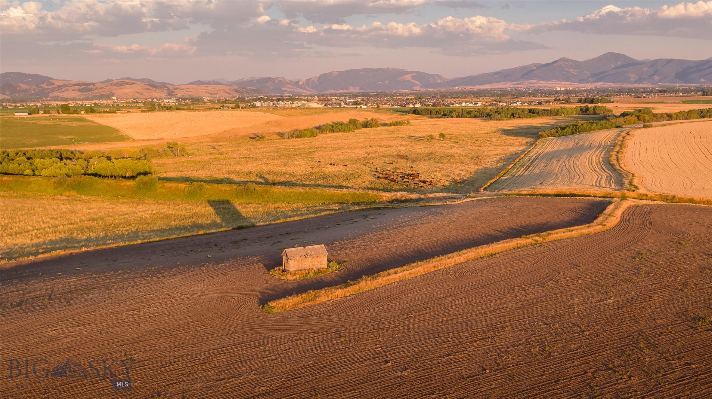Montana Real Estate Listings Main Image