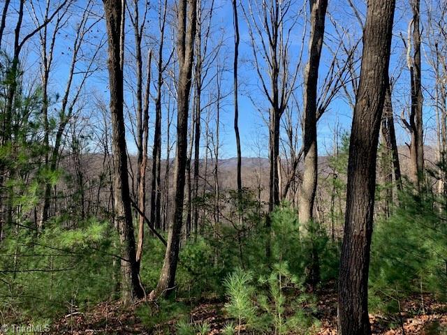 0 Powder Horn Estates Road Property Photo