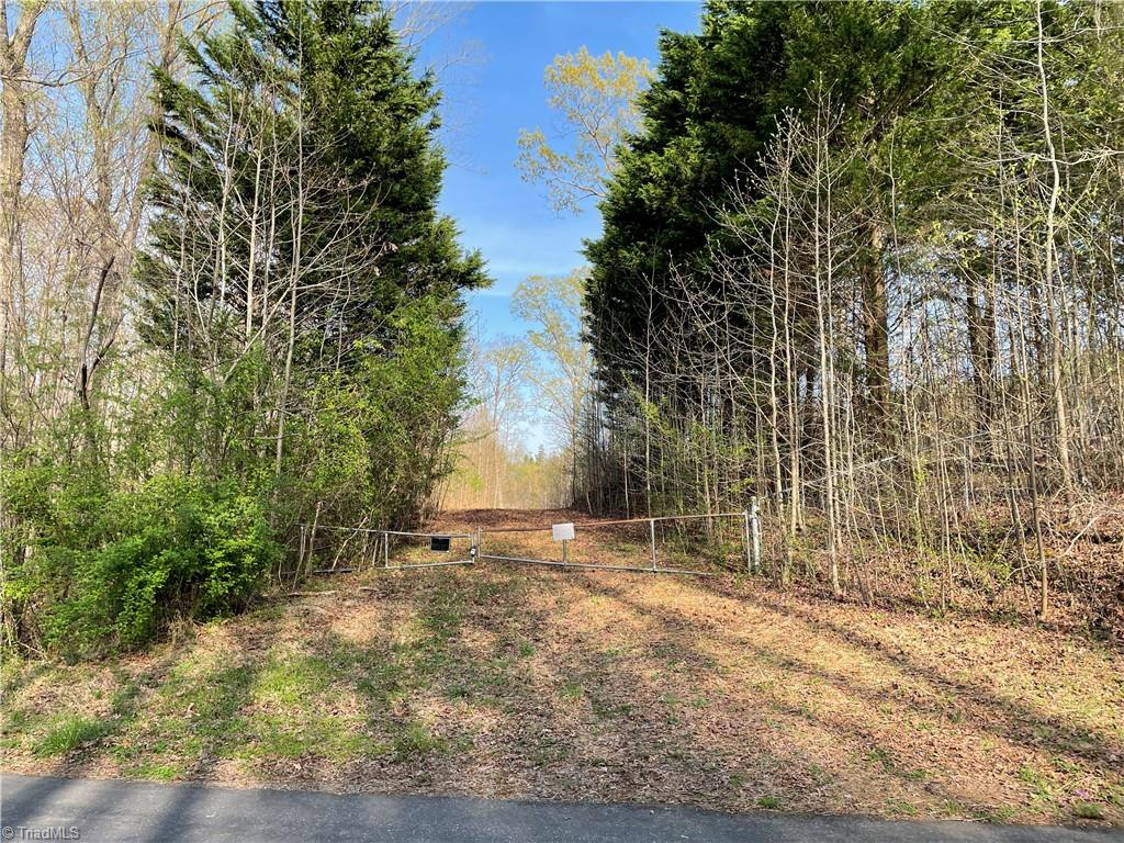 0 Carillon Drive Property Photo