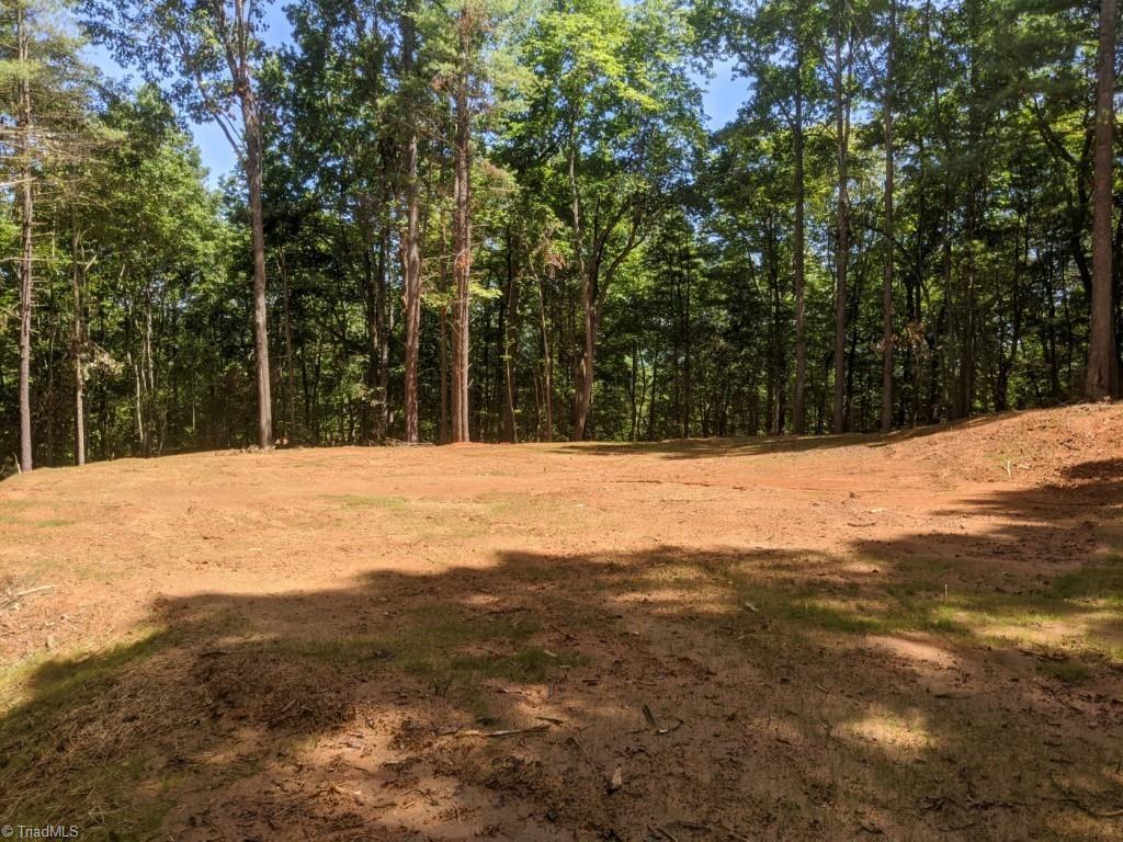 Lot 21 Falcon Ridge Lane Property Photo