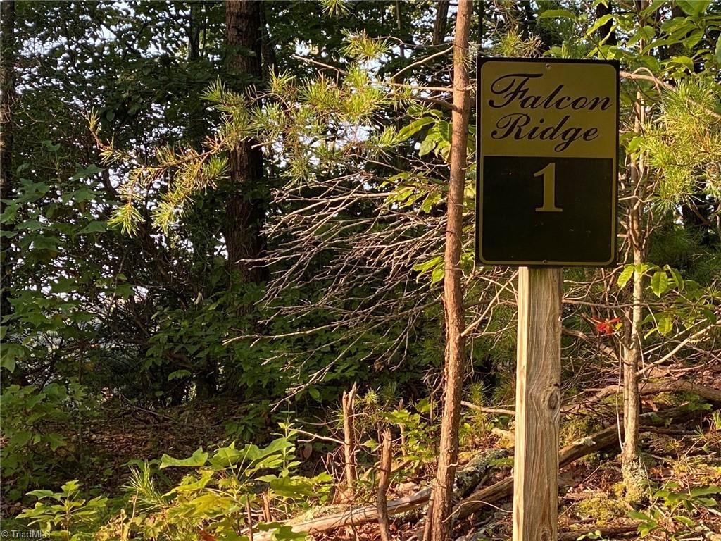 Lt 1 Falcon Ridge Drive Property Photo