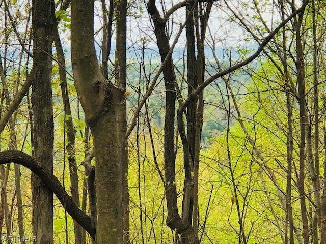 2215 Bear Trail Property Photo