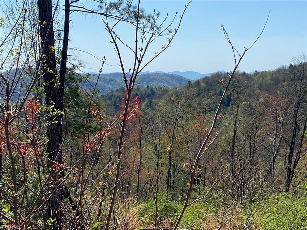 0000 Sheets Gap Road Property Photo