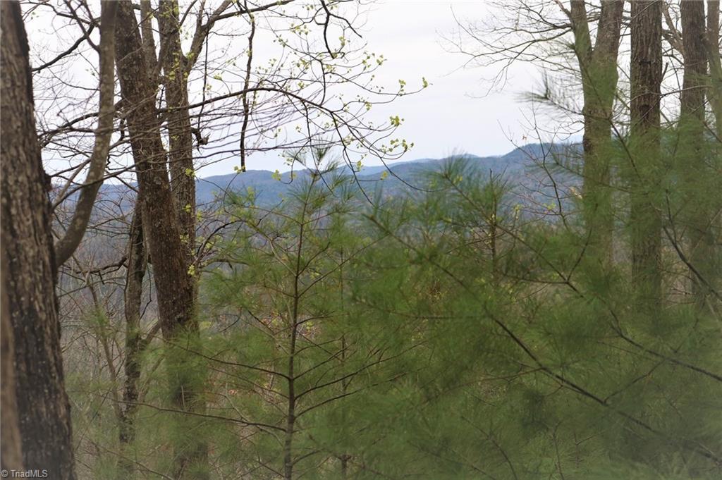 247 Grannys Ridge Road Property Photo