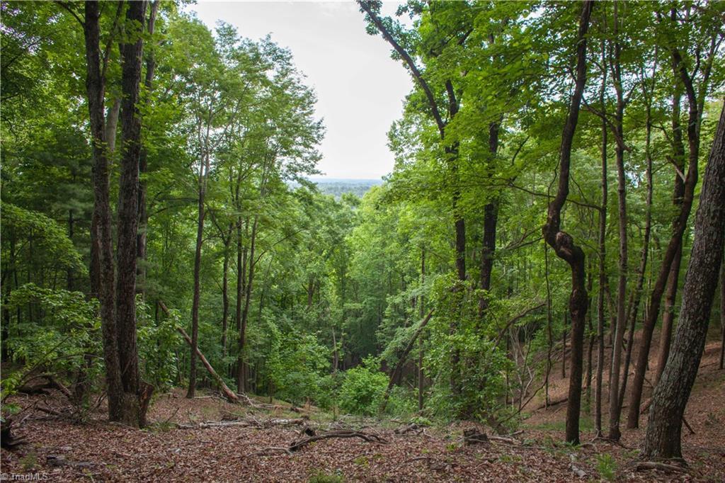 000 Hawkins Grove Road Property Photo