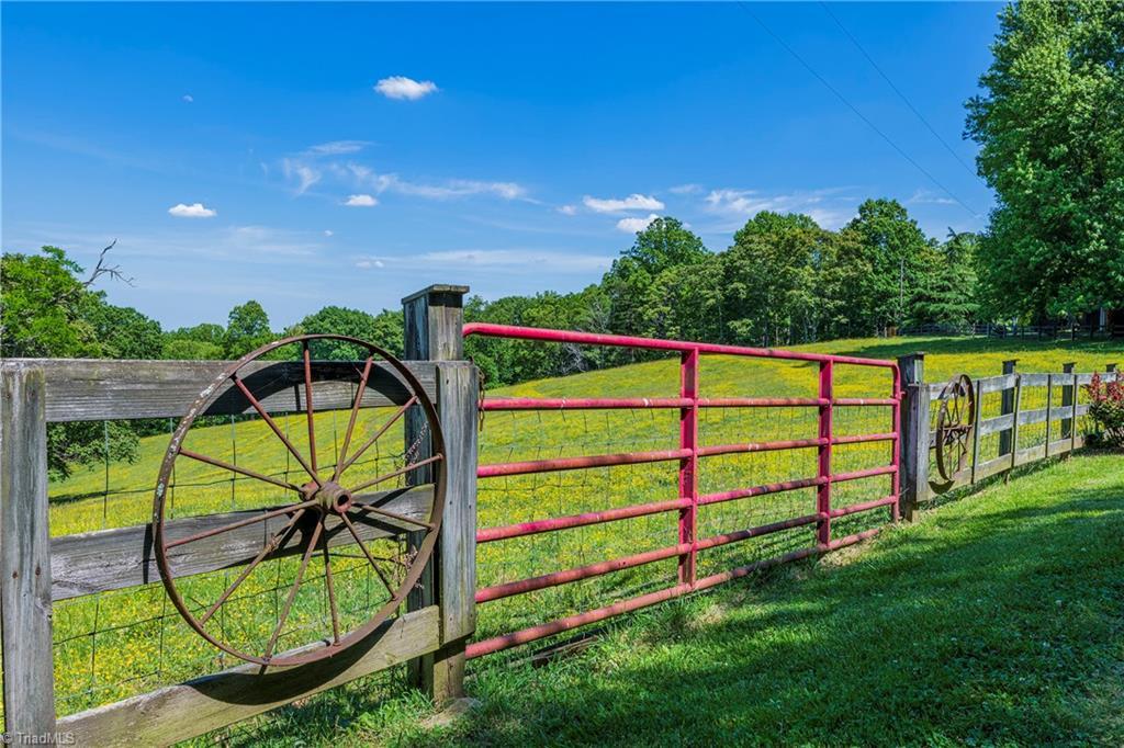 196 Blue View Farm Trail Property Photo 6