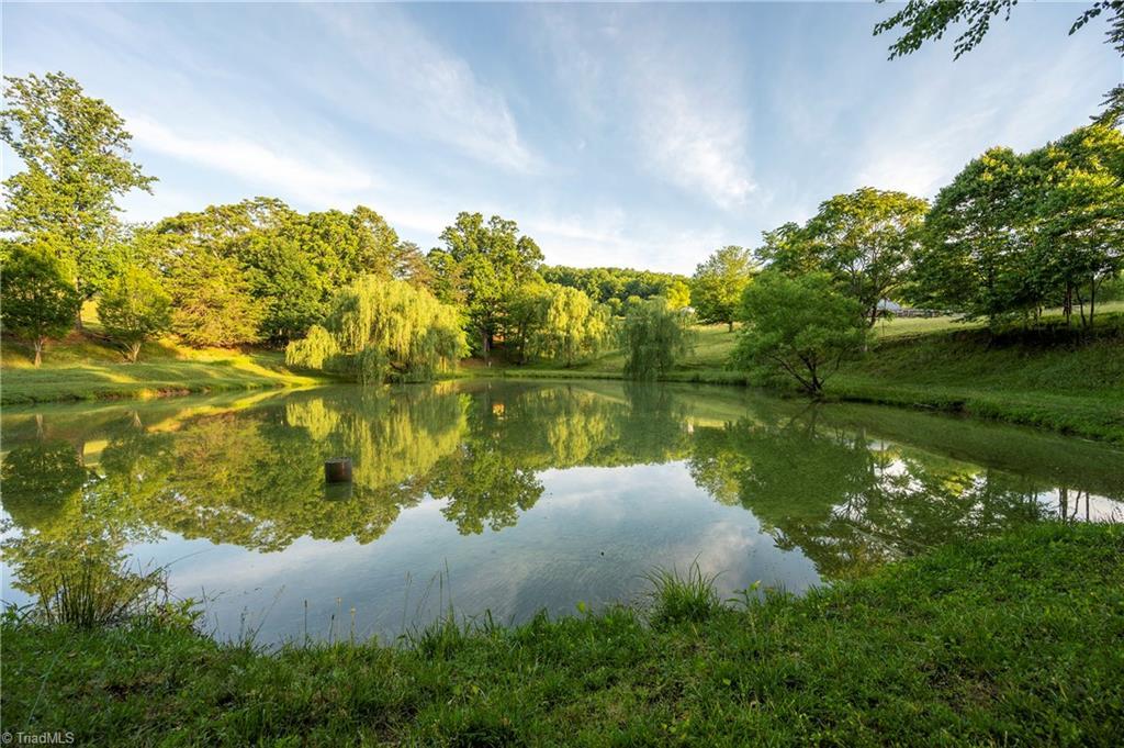 196 Blue View Farm Trail Property Photo 46
