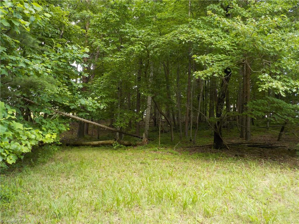 0 Baux Mountain Road Property Photo