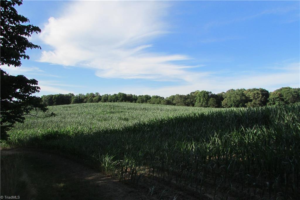 Davie County Real Estate Listings Main Image