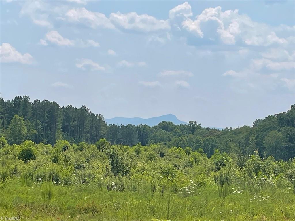 3644 Nc Highway 704 Property Photo