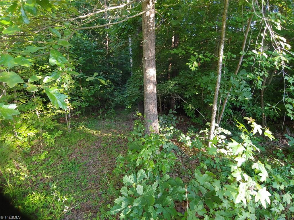 3292 Minglewood Trail Property Photo 15