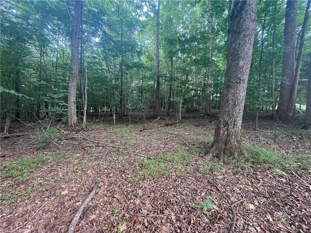1.65 Acres Ayersville Road Property Photo
