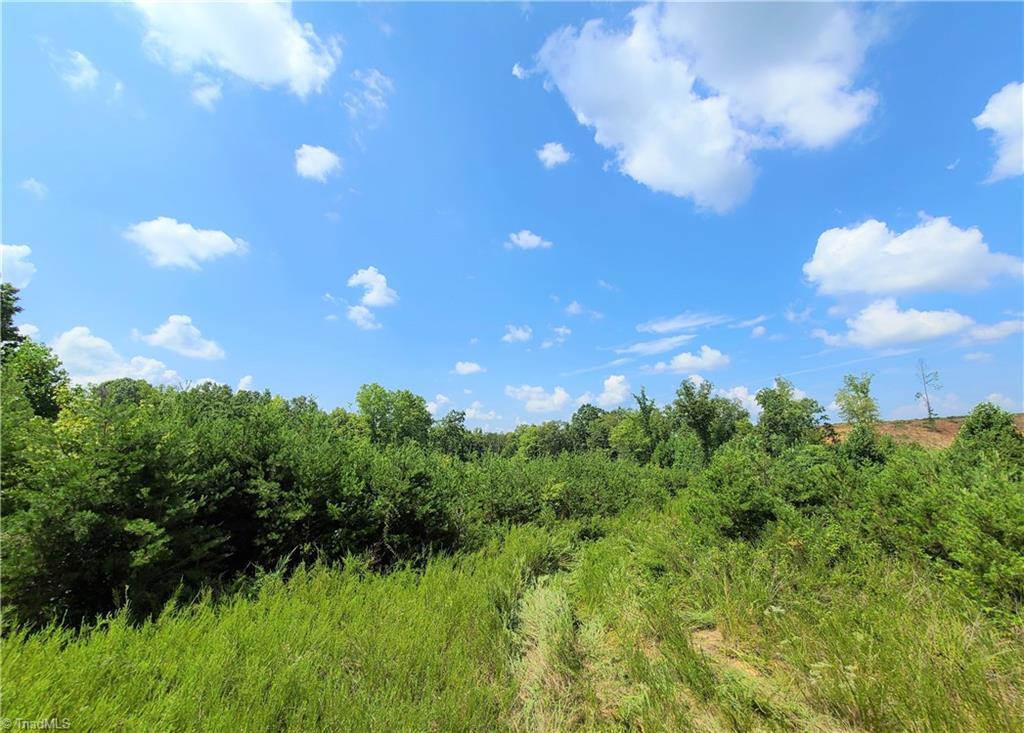 Xx 10.57 Acres S Friendship Road Property Photo