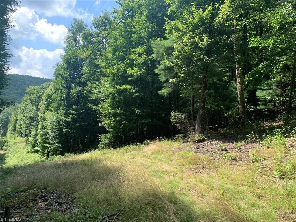 Tbd Hollow Point Drive Property Photo