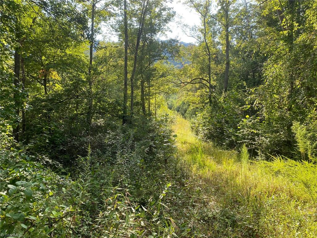 00 Grissel Tail Road Property Photo