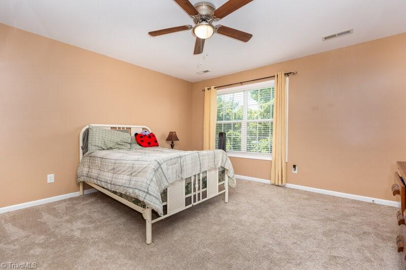 135 Meadowsweet Court Property Picture 25