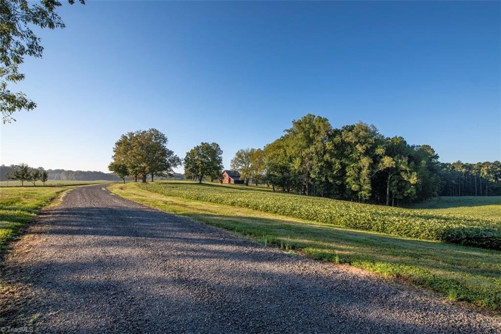 583 Foster Dairy Road Property Photo 1