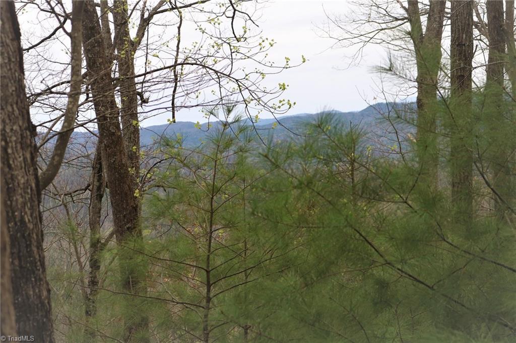 246 Grannys Ridge Road Property Photo