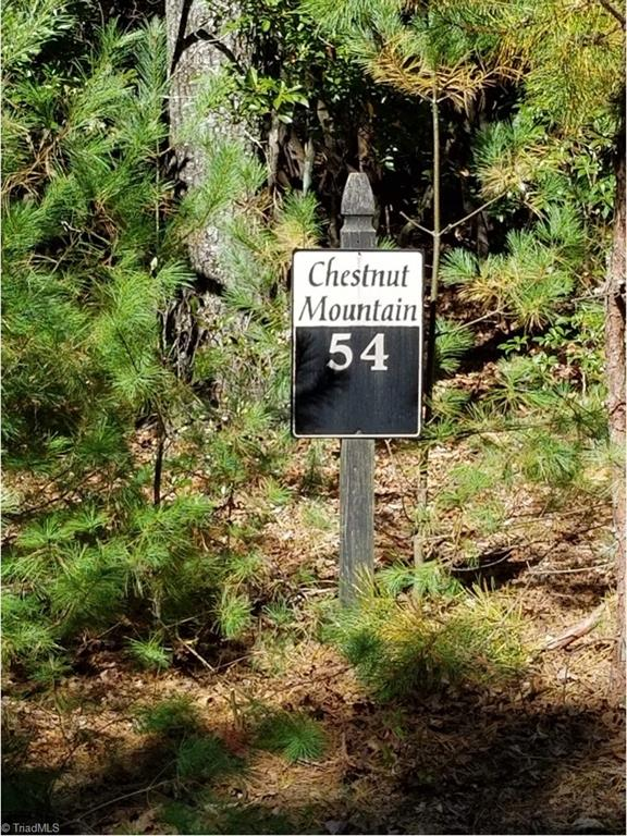 Tbd Chestnut Mountain Farms Parkway Property Photo