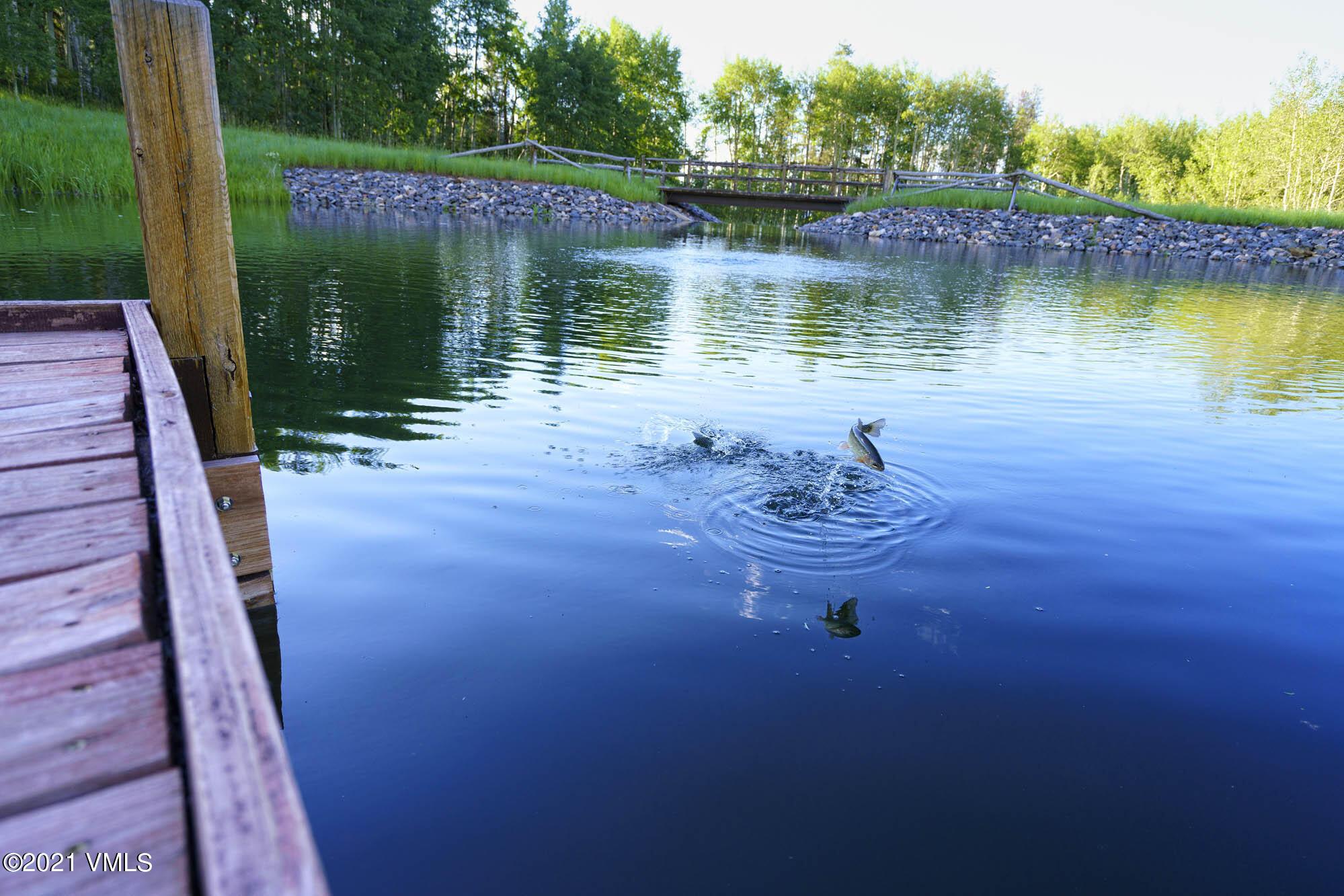 2400 Casteel Creek Property Photo 101